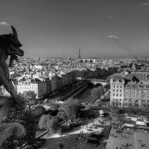 По следам парижских алхимиков