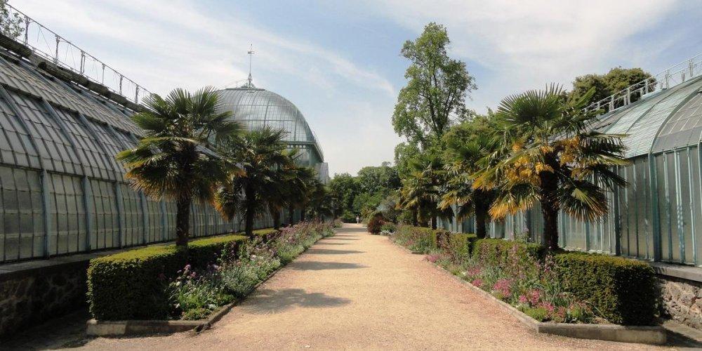 Оранжерейный сад Отей