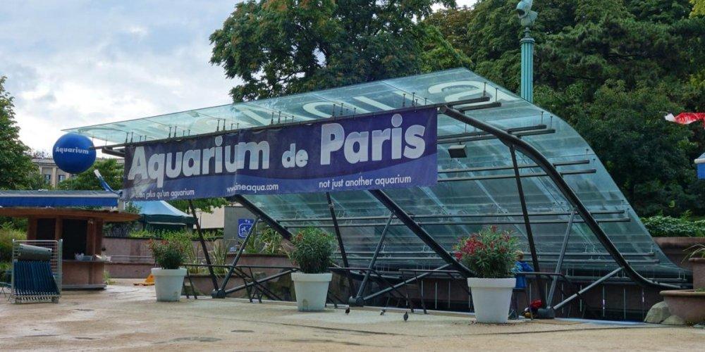 Парижский океанариум CineAqua
