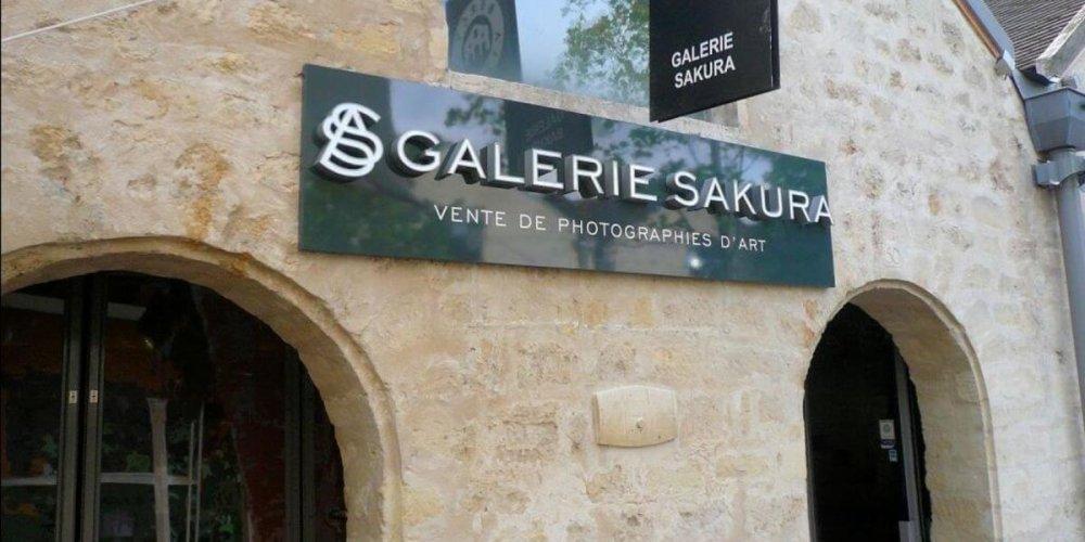 Галерея Сакура