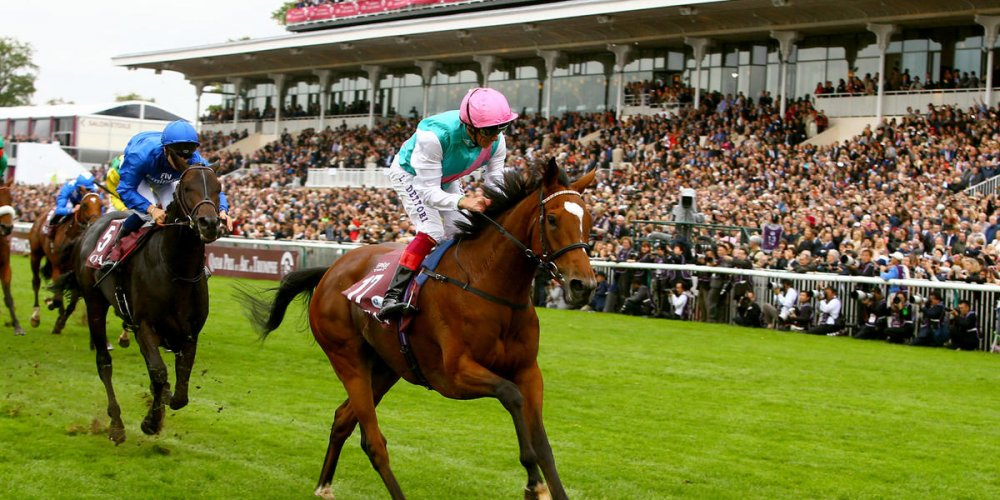 Конные скачки The Prix de l'Arc de Triomphe
