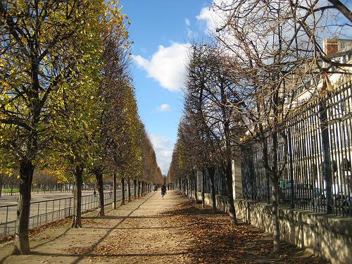 Погода в париже в ноябре 3