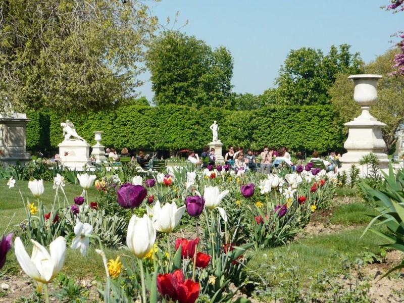 Сад Тюильри 5