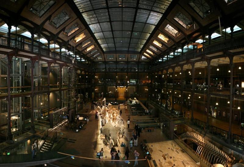 Большая галерея эволюции2