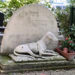 Кладбище собак (1)