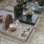 Кладбище собак (3)
