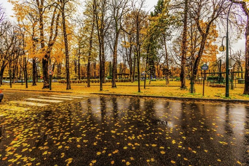 Погода в Париже осенью4