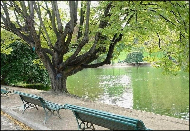 park-monsuri2